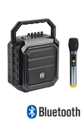 Portable PA with Wireless Mic